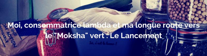 Moi, consommatrice lambda et ma longue route vers le « Moksha » vert - Le lancement
