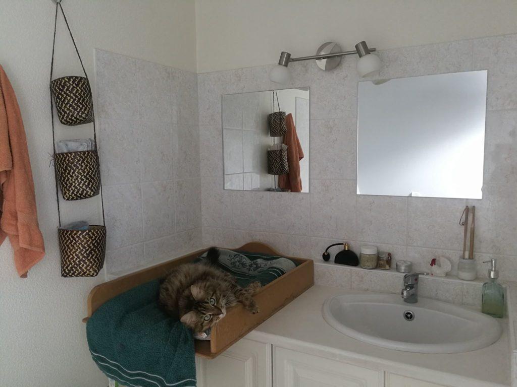 Salle de bain presque zéro déchet